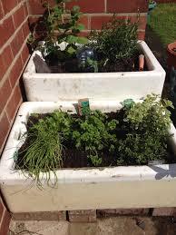 garden sinks. Butler / Belfast Sink Herb Garden Can\u0027t Wait To Plant My Herbs In Sinks