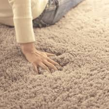 soft rugs for bedrooms. Simple For Oval Floormat Carpet Long Hair Shaggy Mat Soft Area Rug Bedroom Living Room  Hallway For Rugs Bedrooms D