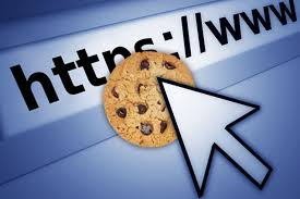 Image result for cookie in web