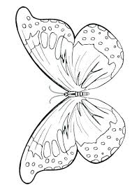 Butterfly Cake Template Printable Medium Size Of Butterfly Cake Pan