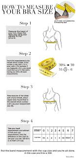 measure your bra size how to measure bra size infographic
