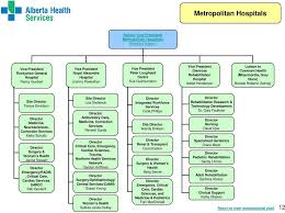 Alberta Health Services Organizational Chart 2017 Organizational Structure Pdf Free Download