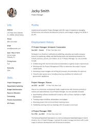12 Project Manager Resume Samples 2018 Free Downloads Template Ex