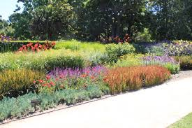 Small Picture BOLD The Secret to Good Garden Design Janna Schreier Garden Design