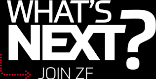 Reasonable Accommodation Process Flow Chart Quality Supplier Intern In Gray Court Sc At Zf