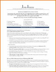 9 Resume Template Marketing Budget Reporting