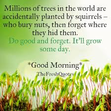 Good Morning Quotes Of The Day Best Of 24 Beautiful Good Morning Quotes And Wishes TheFreshQuotes