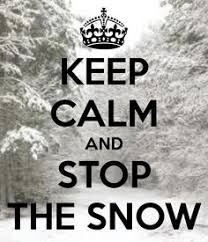 Image result for had enough snow images
