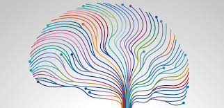 Adhd Equivalency Chart Patterns Of Activity In The Resting Brain Shed Light On