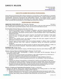 Best Career Objective Beauteous Resume Career Objective Sample Best Of Customer Service Objective