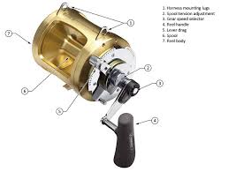 Selecting A Conventional Reel West Marine