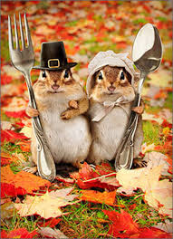 thanksgiving photo cards chipmunk couple funny humorous thanksgiving card greeting card by