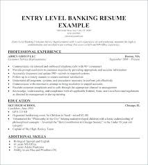 Resume Examples Entry Level Interesting Resume Career Summary Summary On Resume Examples Summary Resume