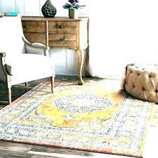 target rugs 4x6 4 x 6 rugs target area fancy rug orange by bed bath and
