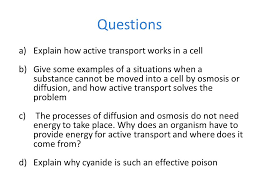 Osmosis Worksheet   Calleveryonedaveday as well Diffusion and osmosis also Diffusion And Osmosis Worksheet   Deployday moreover Diffusion and Osmosis WS 2017 Jalin Norman   Diffusion and Osmosis as well  moreover diffusion and osmosis worksheet 08   Diffusion and Osmosis likewise PDF  osmosis gizmo worksheet answers pdf  28 pages    osmosis further 96 best Diffusion Osmosis images on Pinterest   Biology  Cell besides Diffusion Osmosis Active Transport Venn Puzzle by BioGas66 in addition  moreover Diffusion student worksheet. on diffusion and osmosis worksheet answers
