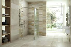 Open Shower Concept With Cool Glass Divider And Wooden Small Designs