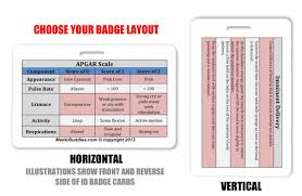 Apgar Scale Badge