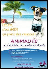 Service de garde d'animaux à votre domicile. Garde D Animaux De Compagnie A Domicile Ou En Famille D Accueil Animaute Le Blog De Moon