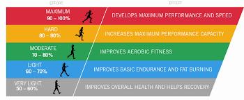training zone diagram
