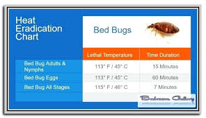 What Temperature Kills Bed Bugs Wyndcutter Com