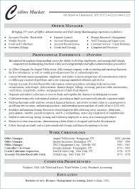 Admin Manager Resume Administration Manager Resume Sles Visualcv