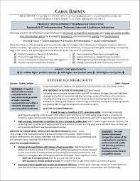sample resume executive director non profit organization job sample resume executive director non profit organization