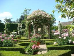 Small Picture 84 best Rose Garden images on Pinterest Garden roses Flowers
