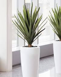 Image Artificial Plants Agave Artificial Plant Green Order Silk Flower Arrangements Artificial Plants Trees At Petals Lifelike Carefree Agave Artificial Plant For Home And Office At Petals