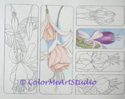 Small Picture DIY Bookmarks Sea Shell Bookmarks Coloring Page 1 PDF File