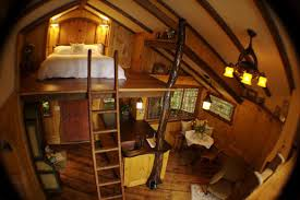 13 Of The Worldu0027s Coolest TreehousesTreehouse Builder Pete Nelson