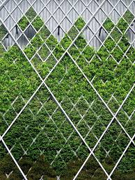Small Picture 34 best Jardn vertical Vertical garden design images on
