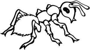 Small Picture Ant Coloring Pages Kids Preschool Crafts