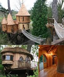 106 Best Tree Abodes Images On Pinterest  Treehouses Coolest Tree Houses