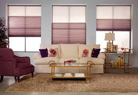 Small Picture Interior Glass Window Design Ideas With Home Depot Shades Plus