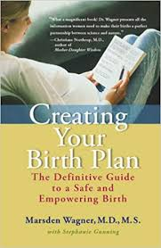 Customizable Birth Plan Creating Your Birth Plan The Definitive Guide To A Safe And