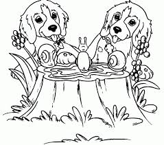 Dog Coloring Pages Coloringrocks