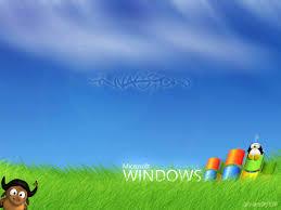 windows xp windows vista windows 7 windows 8 hd wallpapers