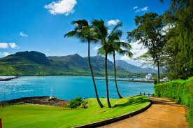 Hawaii HD Wallpaper New tab Theme ...