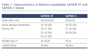 Balloon Or Self Expandable Tavi