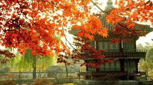 Korean Autumn Wallpapers - Top Free ...