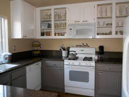 Painting Kitchen Cabinets Grey Painted Kitchen Cabinets Gray House Decor