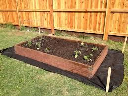 87 favorite of wood for raised vegetable garden image