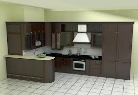 L Shaped Kitchen Cabinets Kitchen Design L Shaped Layout Small L