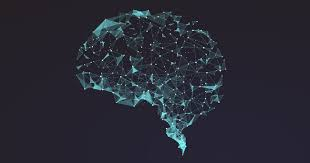 Brain-Computer Interfaces Show That Neural Networks Learn by Recycling |  Quanta Magazine