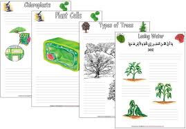 Botany Notebooking Pages | Iman's Home-School