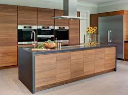 custom modern kitchen cabinets. Modern Kitchen Cabinets \u2013 Tenafly, Custom Modern Kitchen Cabinets E