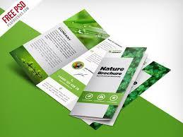 Free Brochure Layouts Nature Tri Fold Brochure Template Free Psd Psdfreebies Com