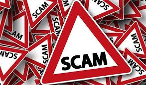 Image result for scams on sheep society