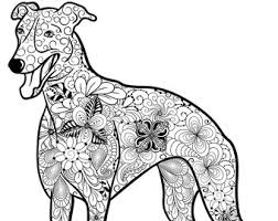 Small Picture Sphynx Cat Coloring Page Hairless Cat Printable by BAYMOONSTUDIO