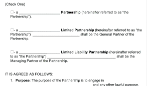 Limited Partnership Agreement Example Lovely Free Templates Business ...
